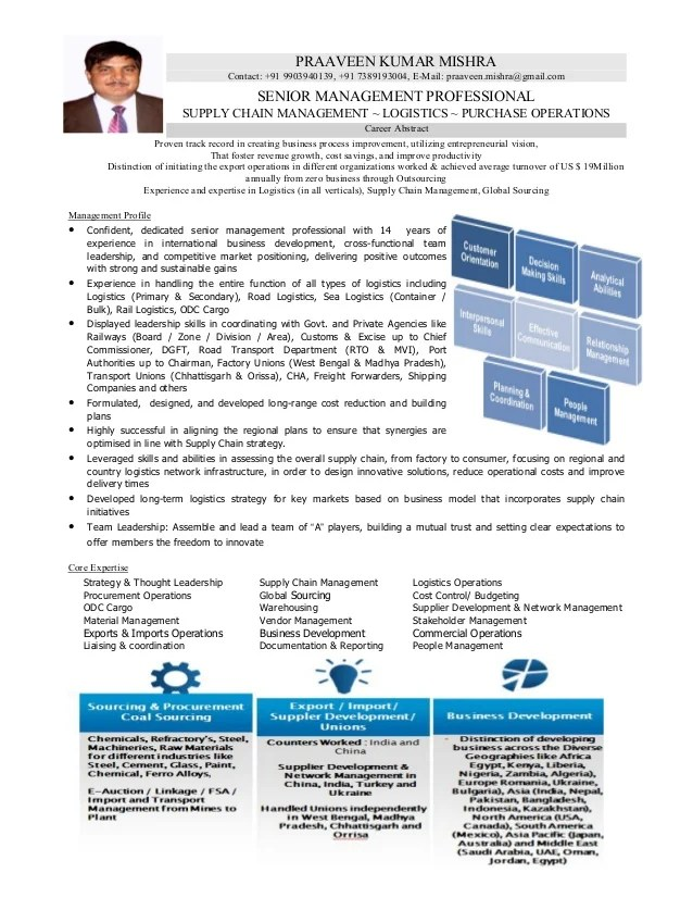 Top Executive Resume Writing Samples Template Tools Resume Of Logistics And Supply Chain Professional With 14