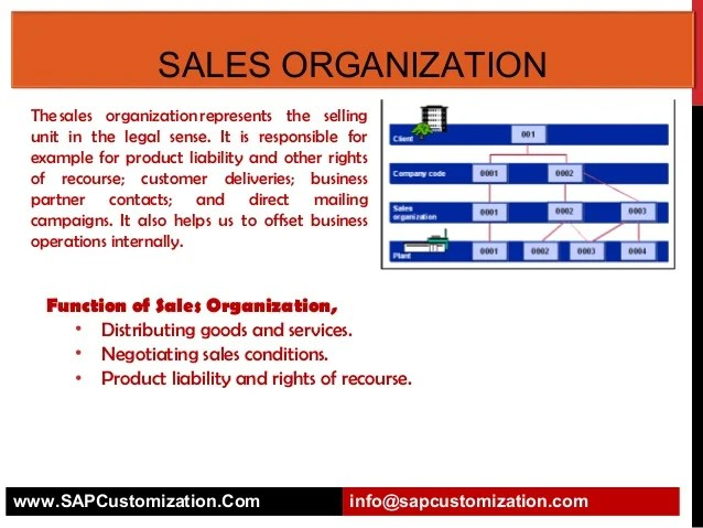 Wholesale Company Organizational Chart Sap Organization Structure