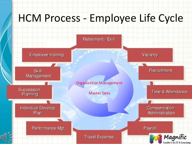 The Grueling Recruitment Life Cycle And Why Its Important Sap Hcm Training Get Sap Hcm Module Certification Online