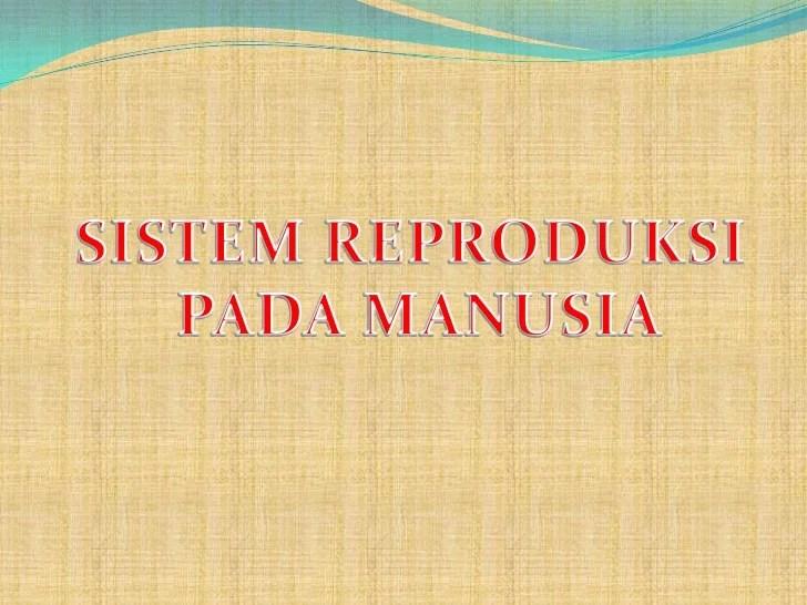Jurnal Tentang Sistem Reproduksi Manusia Multimedia Pembelajaran Reproduksi Pada Manusia Sistem Reproduksi 2 Reproduksi Pada Manusia Biologi Share The