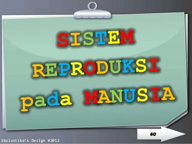 Jurnal Sistem Reproduksi Manusia Multimedia Pembelajaran Reproduksi Pada Manusia Sistem Reproduksi Manusia