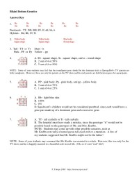 Spongebob Genetics Worksheet. Worksheets. Kristawiltbank ...