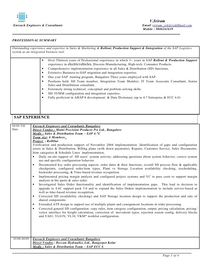 sample resume abap consultant professional resumes example online
