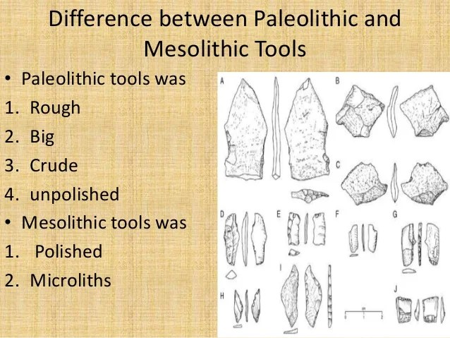 The differences between paleolithic and neolithic Essay Help