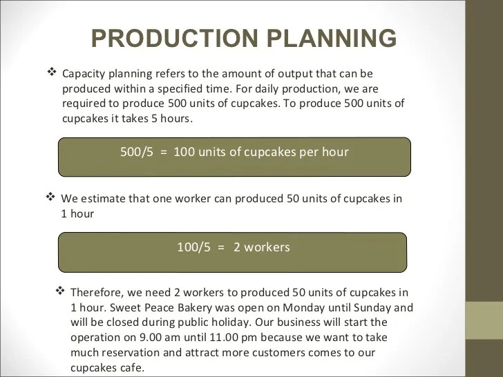 Video Production Business Plan Template Costumepartyrun
