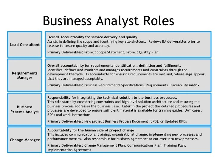 Roles And Responsibilities For Business Analyst Photo Store Life Cycle Of A Business Analyst Download