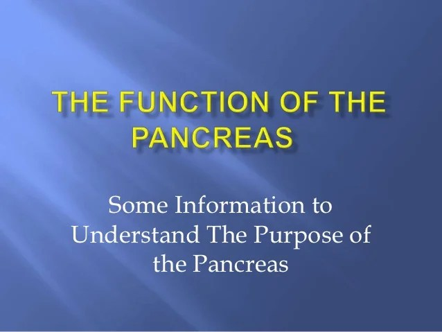 The Function of the pancreas