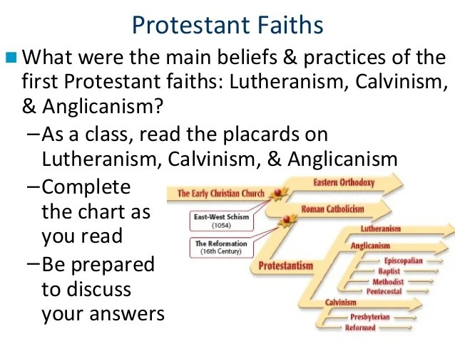 The Protestant Reformation 1