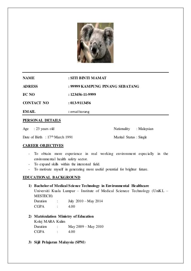 Resume Sample Bahasa Melayu