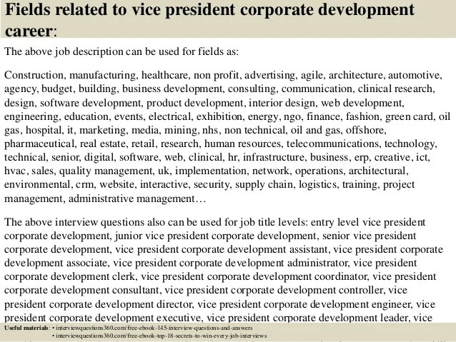 vice president of business development job description - Romeo
