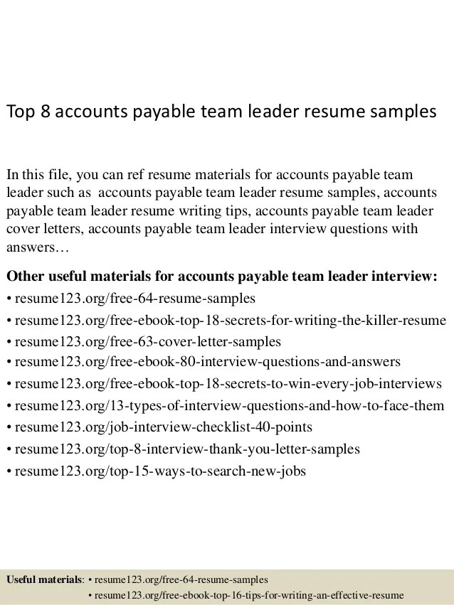 team leader cv example