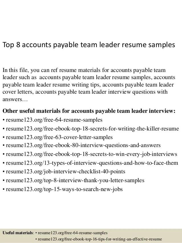 team leader cv example