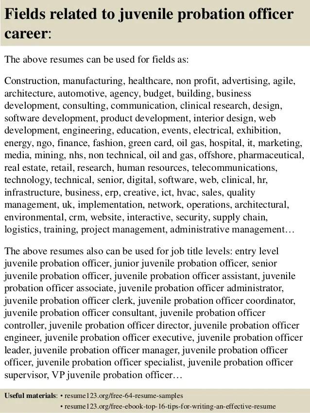 probation officer resumes - Minimfagency