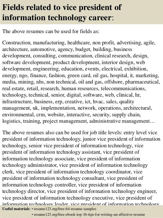 resume vice president information technology
