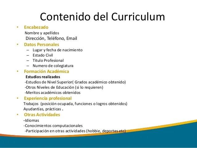 Formato De Curriculum Vitae Moderno Word Sample Resume Service