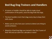 Using trained dogs to sniff out bed bugs