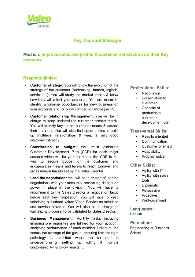 job description director of engineering - Roho4senses