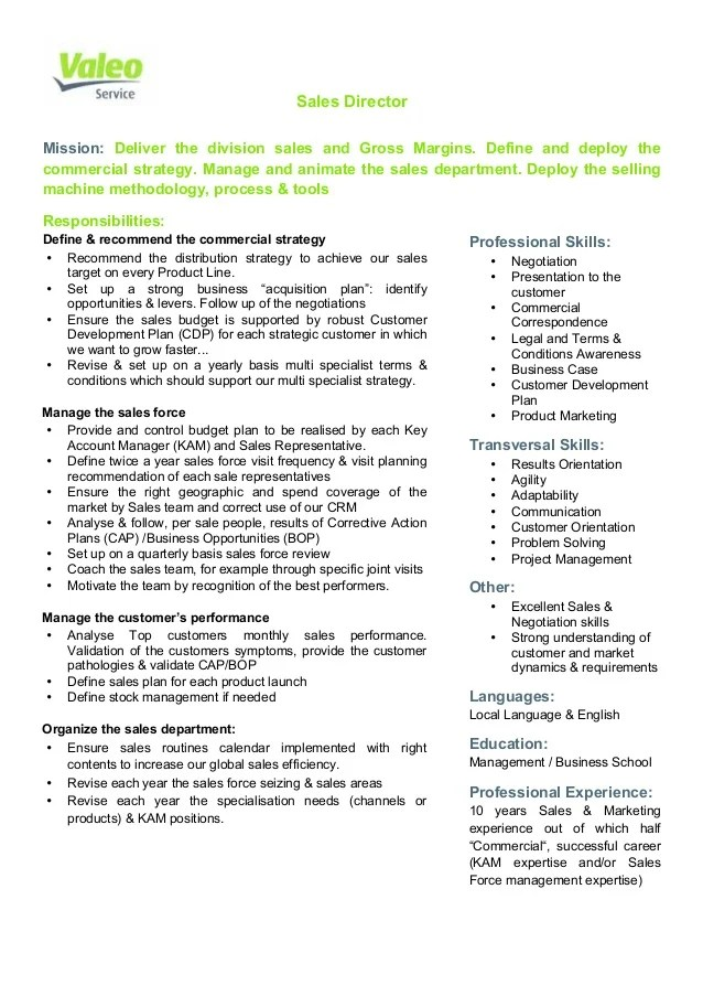 director of sales job description - Alannoscrapleftbehind