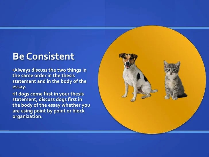 essays on dogs and cats Custom paper writing service dogs vs cats comparison this essay will compare and contrast dogs and cats.