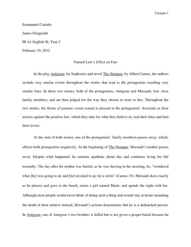 examples of literary criticism essays - Selol-ink