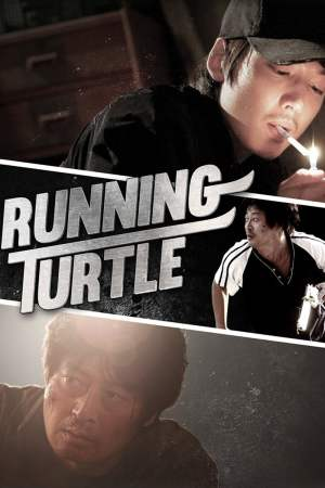 Image Running Turtle