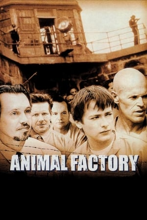 Image Animal Factory