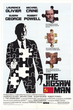 Image The Jigsaw Man