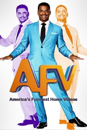 Image America's Funniest Home Videos
