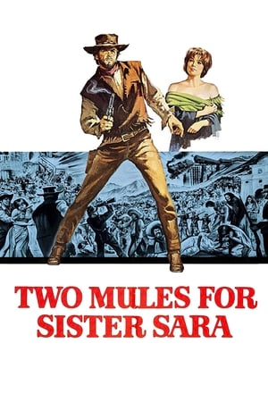 Image Two Mules for Sister Sara