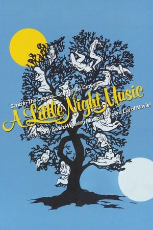 Image A Little Night Music