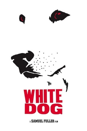 Image White Dog
