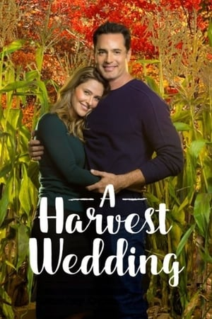 Image A Harvest Wedding