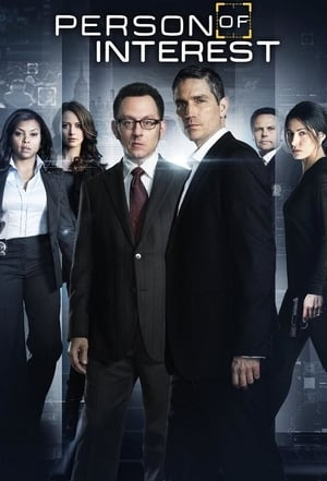 Poster Person of Interest 2011