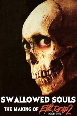 Image Swallowed Souls: The Making of Evil Dead 2