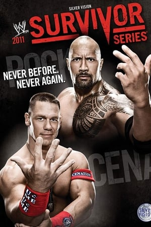 Image WWE Survivor Series 2011