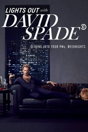 Image Lights Out with David Spade