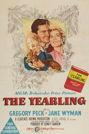 Image The Yearling