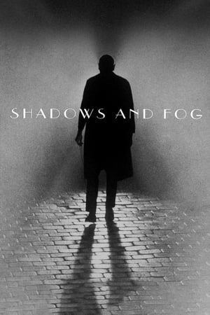 Image Shadows and Fog