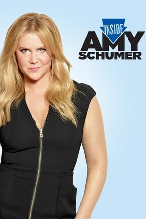 Image Inside Amy Schumer