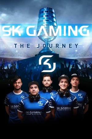 Image SK Gaming: The Journey