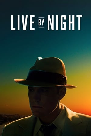 Image Live by Night