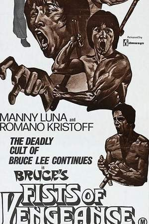 Image Bruce's Fists Of Vengeance