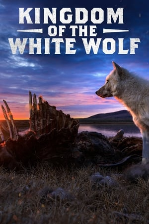 Image Kingdom of the White Wolf