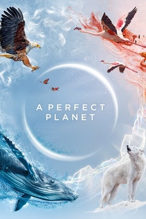 Image A Perfect Planet