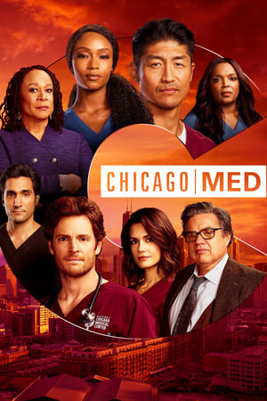 Poster Chicago Med 2015