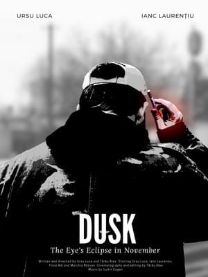 Dusk or The Eye's Eclipse in November