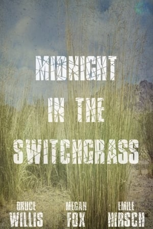 Image Midnight in the Switchgrass