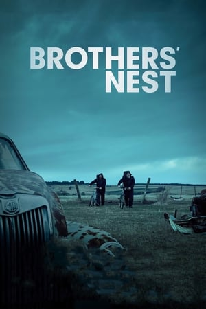 Image Brothers' Nest