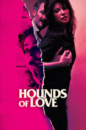 Image Hounds of Love