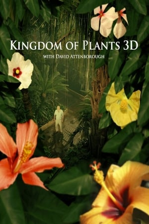 Poster Kingdom of Plants 2012